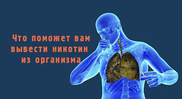 Пять продуктов, которые помогут вывести никотин из организма